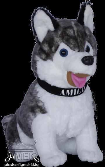 Куче хъски с каишка