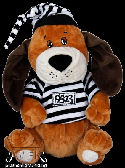 Куче затворник