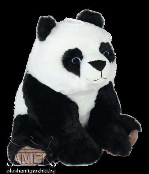 Панда със сини очи