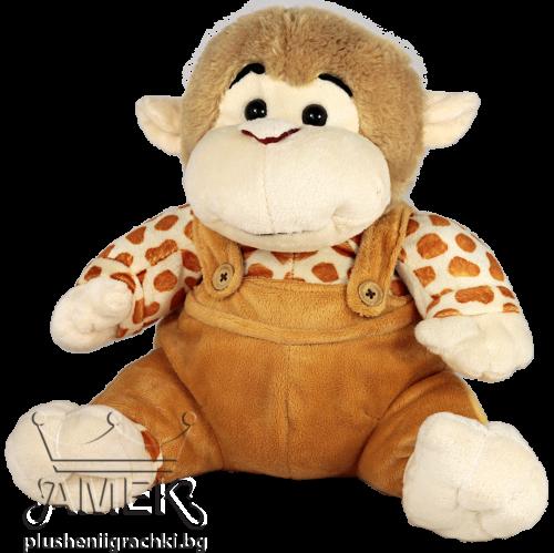 Маймунка с гащиризон