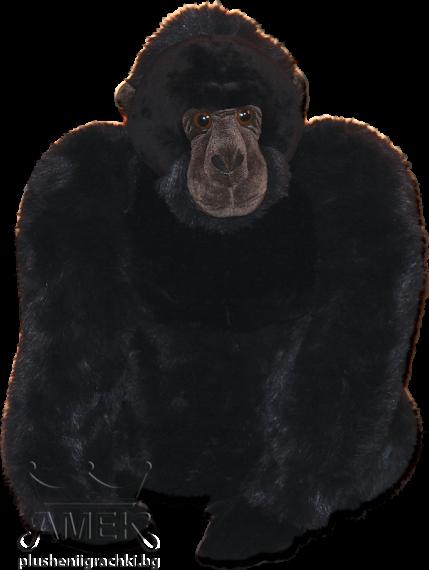 Маймуна горила
