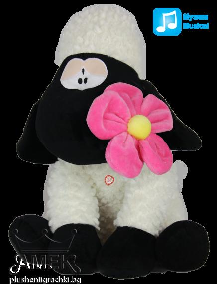 Овчица с цвете| 2 цвята
