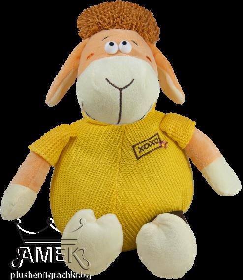 Овца с яке|2 цвята