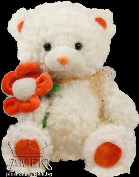 Teddy bear with flower| 3 colours