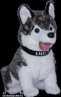 """Куче хъски с каишка """"Amigo"""""""