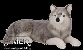 Сибирски вълк