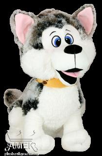 Куче - Хъски с каишка