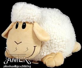 Бяла овца
