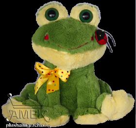 Frog with ladybug