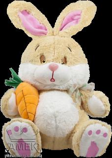 Заек с морков
