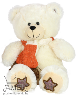 Teddy bear with winter scarf