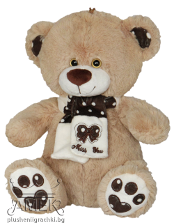 "Teddy bear with a scarf ""Miss you"" 