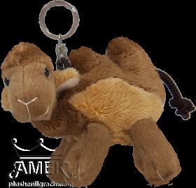 Ключодъжател| Екзотични животни | 6 вида
