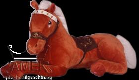 Легнал кон| 3 цвята