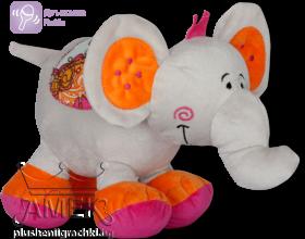 Индийско слонче| 2 цвята