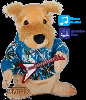 Хавайско куче с китара|2 вида